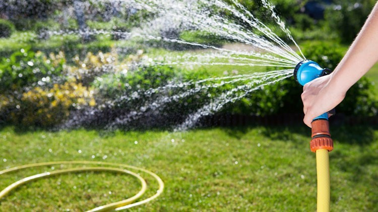 Best Expandable Garden Hose