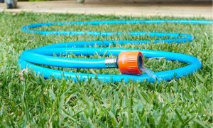 Best Rubber Garden Hoses